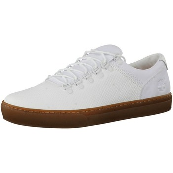 Chaussures Homme Baskets basses Timberland Adv 2 0 Cupsole Blanc