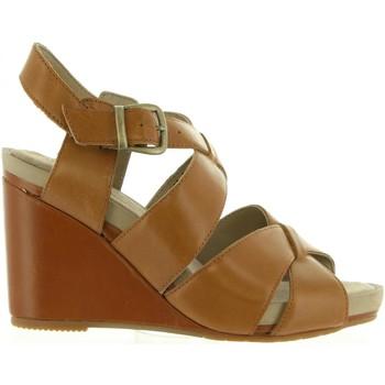 Chaussures Femme Sandales et Nu-pieds Hush puppies 560602-50 FINTAN 91 MARRON CLAIR Marrón
