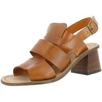 Chaussures Femme Sandales et Nu-pieds Antichi Romani 405 marron