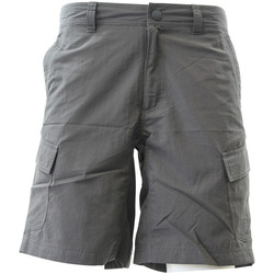 Vêtements Homme Shorts / Bermudas The North Face NORTH FACE M HORIZON II CARGO Short Homme Gris gris