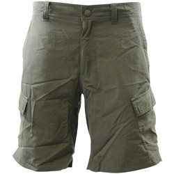 Vêtements Homme Shorts / Bermudas The North Face NORTH FACE M HORIZON II CARGO Short Homme Kaki vert