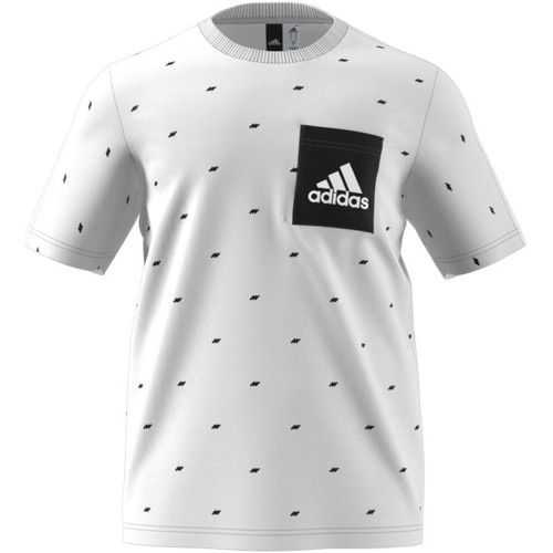 Vêtements Homme T-shirts manches courtes adidas Performance Essentials Seasonal White/Black