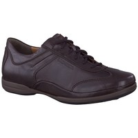 Chaussures Homme Baskets basses Mephisto Chaussures RICARIO Marron