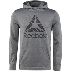 Vêtements Homme Sweats Reebok Sport Sweat à capuche molletonné Workout Ready Gris