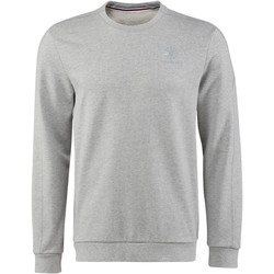 Vêtements Homme Sweats Reebok Classic Franchise French Terry crewneck Sweatshirt Gris