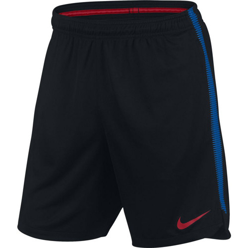 Vêtements Homme Shorts / Bermudas Nike FC Barcelone Dry Squad Short Black / Blue / Red