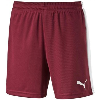 Vêtements Shorts / Bermudas Puma Short  Pitch bordeaux/blanc