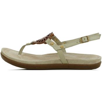 Chaussures Femme Sandales et Nu-pieds UGG Sandale  Ayden (Ecru) Ecru
