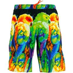 Vêtements Homme Shorts / Bermudas Emporio Armani EA7 Bermuda  (Multicolore) Vert