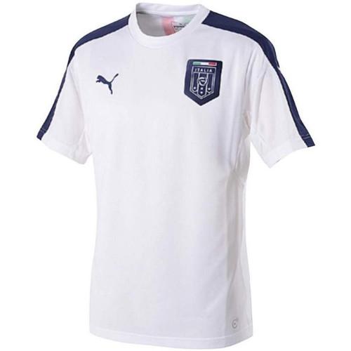 Vêtements Homme T-shirts manches courtes Puma Maillot de football  FIGC Italia Stadium 2017 - 750747-02 Blanc
