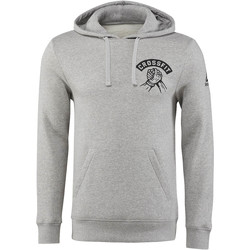 Vêtements Homme Sweats Reebok Sport Sweat à capuche CrossFit Community Gris