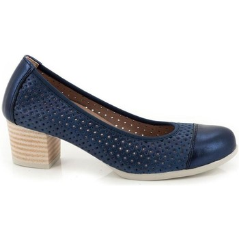 Chaussures Femme Escarpins Pitillos 1047 Bleu