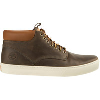 Chaussures Homme Boots Timberland Chaussures Homme Ek 2.0 Cupsole Chukka Adventure  Kaki Fonce Taupe