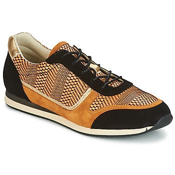 Chaussures Femme Baskets basses Bocage LAURETTE Noir / Ocre