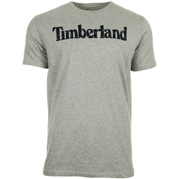 Vêtements Homme T-shirts manches courtes Timberland Tfo Ss Linear gris
