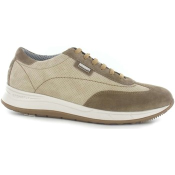 Chaussures Homme Baskets basses Stonefly 108657 Chaussures lacets Man Beige Beige