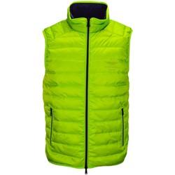 Vêtements Homme Doudounes Hackett Doudoune sans manches matelassée  vert anis pour homme Vert