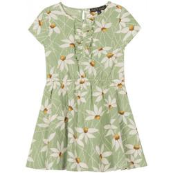 Vêtements Fille Robes courtes Petit Louie Robe Daisy Shade Vert 01439 Vert