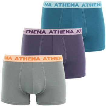 Vêtements Homme Boxers / Caleçons Athena Lot de 3 boxers homme Authentic granitcassisbleuatlantique