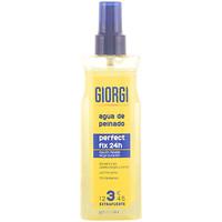 Beauté Coiffants & modelants Giorgi Line Perfect Fix Agua De Peinado Perfect Fix 24 H