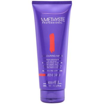 Beauté Shampooings Farmavita Amethyste Colouring Mask-red  250 ml