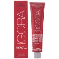 Beauté Accessoires cheveux Schwarzkopf Igora Royal Color Creme 0-88  60 ml