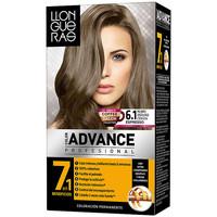 Beauté Accessoires cheveux Llongueras Color Advance 6,1-rubio Oscuro Ceniza