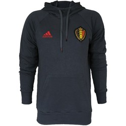 Vêtements Homme Pulls adidas Originals Royal Belgian Football Association Rbfa Hooded Sweat Top Rouge-Gris