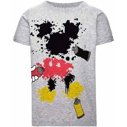 Vêtements Garçon T-shirts manches courtes Name It Kids NITMICKEY COLT SS TOP MINI Gris