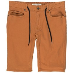 Vêtements Garçon Shorts / Bermudas Element Short  Owen Wk Color Boy - Rust Brown Marron