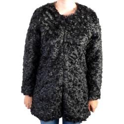 Vêtements Femme Blousons Kaporal Blouson  Botax Black Noir