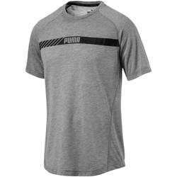 Vêtements Homme T-shirts manches courtes Puma T-shirt  Fd Active Tec gris