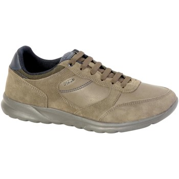 Chaussures Homme Baskets basses Geox Baskets  U Damian A Taupe Marron