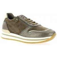 Chaussures Femme Baskets basses Reqins Baskets cuir velours Taupe