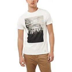 Vêtements Homme T-shirts manches courtes O'neill T-Shirt  Lm Wildlife - Powder White blanc