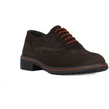 Chaussures Homme Derbies Igi&co BRUSH CAFFE Marrone