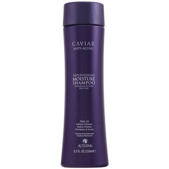 Beauté Shampooings Alterna Caviar Anti-aging Replenishing Moisture Shampoo  250 ml