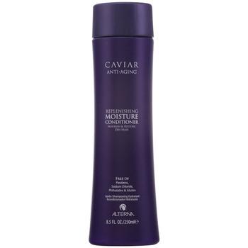 Beauté Soins & Après-shampooing Alterna Caviar Anti-aging Replenishing Moisture Conditioner  250 ml
