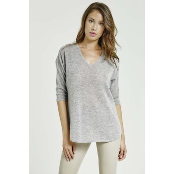 Vêtements Femme Pulls Max & Moi Pull NAWELLE Gris