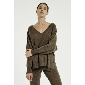 Vêtements Femme Pulls Max & Moi Pull NINDOW Marron