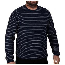 Vêtements Homme Pulls Jack & Jones LOPEPulls