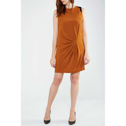 Vêtements Femme Robes courtes Yas Robe Erica  Marron Marron