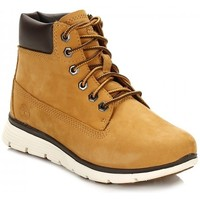 Chaussures Homme Baskets mode Timberland KILLINGTON 6 IN WHEAT Autres
