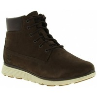 Chaussures Homme Baskets mode Timberland KILLINGTON 6 IN RED Autres