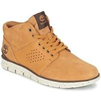 Chaussures Homme Baskets mode Timberland BRADSTREET HALF CAB Marron