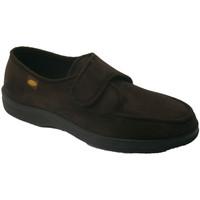 Chaussures Homme Chaussons Doctor Cutillas  Sneaker velcro pieds très délicats Doc marrón