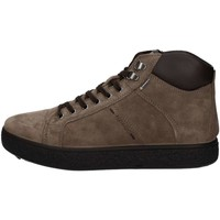 Chaussures Homme Baskets montantes Igi&co 8721300  Homme Brown Brown