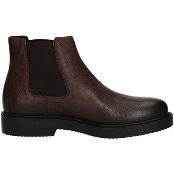 Chaussures Homme Boots Igi&co 8688500 Bottes et bottines Homme Brown Brown