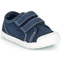 Chaussures Garçon Baskets basses Chicco CAMBRIDGE Bleu