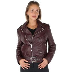 Vêtements Femme Vestes en cuir / synthétiques Schott Blouson perfecto en cuir agneau ref_sch31135-plum Violet